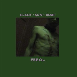 Black Sun Roof: Feral LP+CD
