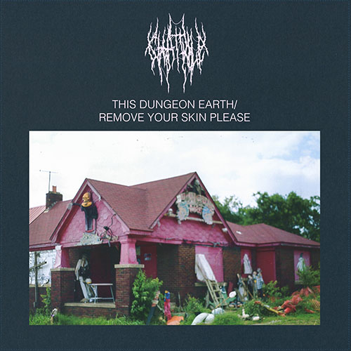 Chat Pile: This Dungeon Earth / Remove Your Skin Please LP