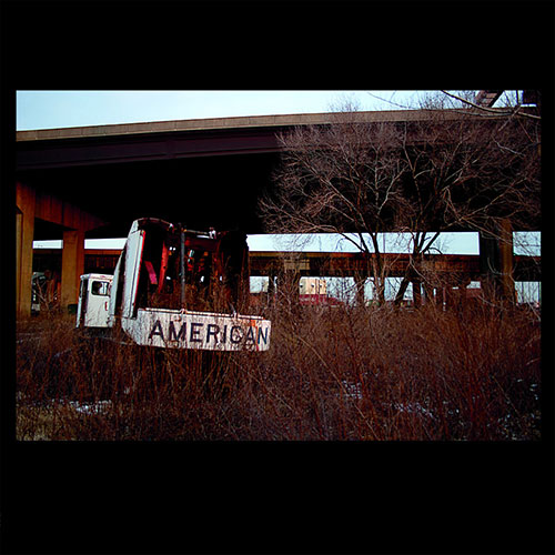Friend Collector: American Demos LP