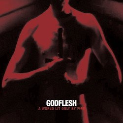 Godflesh: A World Lit Only by Fire LP