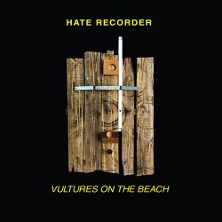 Hate Recorder: Vultures on the Beach 7""