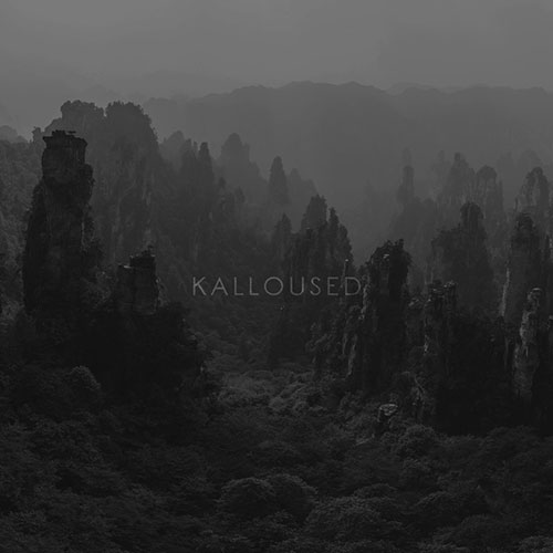 Kalloused: Damn You Believer LP