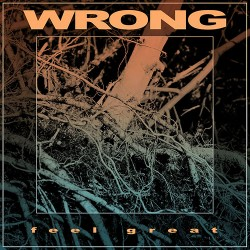 Wrong: Feel Great LP