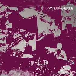 C. Spencer Yeh & Okkyung Lee & Lasse Marhaug: Wake Up Awesome LP